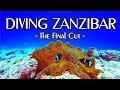 "Scuba Diving in ZANZIBAR is UNBELIEVABLE !, ""Zanzibar"" ""One Ocean"" ""Sansibar"" ""Mnemba Atoll"" ""Mnemba Island"", One Ocean, Kiwengwa (Ostküste), Zanzibar, Tansania"