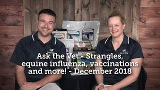 Ask the Vet - Strangles, equine influenza, vaccinations and more! - December 2018