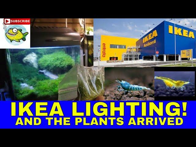 AQUARIUM IKEA LIGHTS !!!!