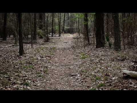 Oak Pinolly Trail