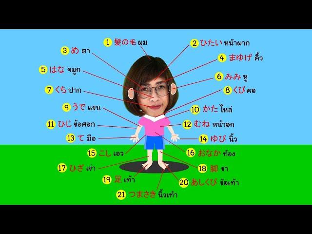 คำศัพท์ภาษาญี่ปุ่น ร่างกายของฉัน | สอนภาษาญี่ปุ่น Foxky JP 🇯🇵