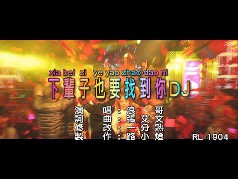 浪哥 | 下輩子也要找到你 | (DJ修改版) | (1080P)KTV