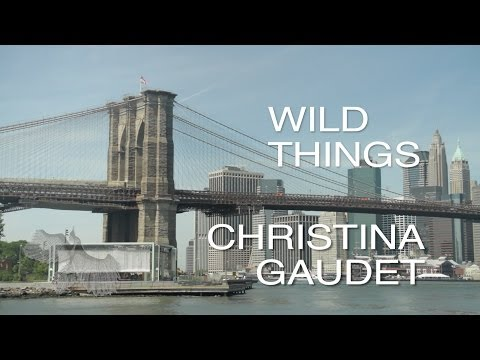 Wild Things ~ Christina Gaudet