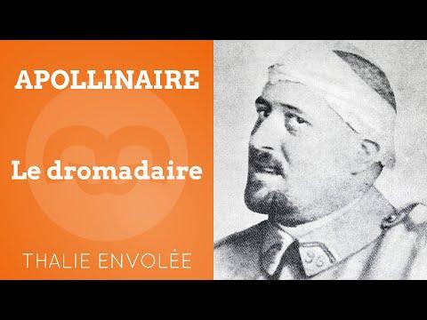 download lagu mp3 mp4 Guillaume Apollinaire Le Dromadaire, download lagu Guillaume Apollinaire Le Dromadaire gratis, unduh video klip Download Guillaume Apollinaire Le Dromadaire Mp3 dan Mp4 Unlimited Gratis