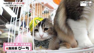 Vol.71「にゃん旅鉄道」お久しぶりにゃ!