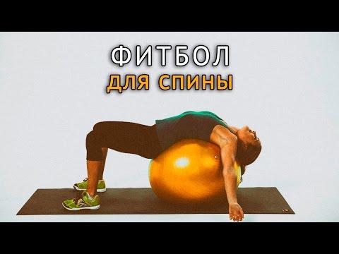 Передняя и задняя связки коленного сустава