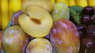 "A Showy 3"" Diameter Fruit"