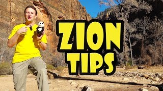 Zion National Park: 10 Things to Know Before You Go