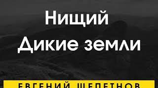 Евгений Щепетнов – Нищий. Дикие земли. [Аудиокнига] фото