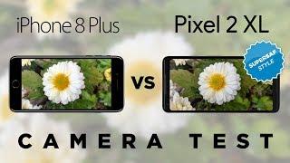 Google Pixel 2 XL vs Apple iPhone 8 Plus Camera Test Comparison