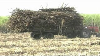 Why privatization of sugar companies in Kenya is a bad idea