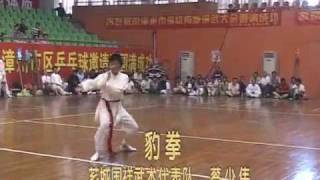 preview picture of video 'Fujian Zhangzhou Martial Arts - Leopard Fist [漳州 -豹拳]'