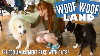 Japan's dog amusement park | WanWan Land!!