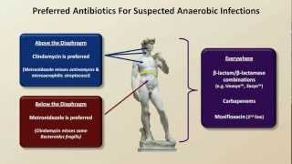Antibiotics for Anaerobic Infections (Antibiotics - Lecture 6)