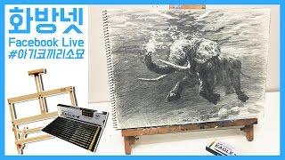 [화방넷 Live] 아기코끼리 소묘 그리기, 소묘는 어떻게 하는걸까?