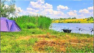 Что такое сигнализаторы для рыбалки в украине