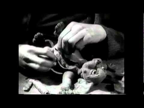 Willie Nelson~The Scientist