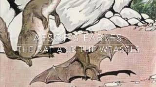 Aesop's Fables The Bat and the Weasels Narrated by Jon Wilkins