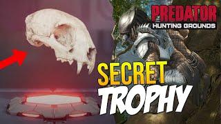 Predator Hunting Grounds SECRET TROPHY & How to UNLOCK! (BOBCAT, COYOTE & WOLF SKULL) Customization?