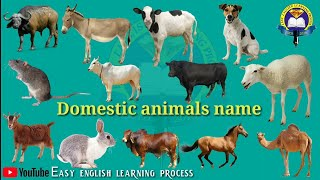DOMESTIC ANIMALS NAME | Learn Domestic Animals Sounds and Names | Easy English Learning Process
