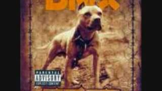 dmx shot down