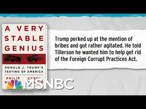 Trump Sought To Get Rid Of Foreign Corrupt Practices Act: Book | Rachel Maddow | MSNBC