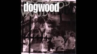 Dogwood - Confusion Zero