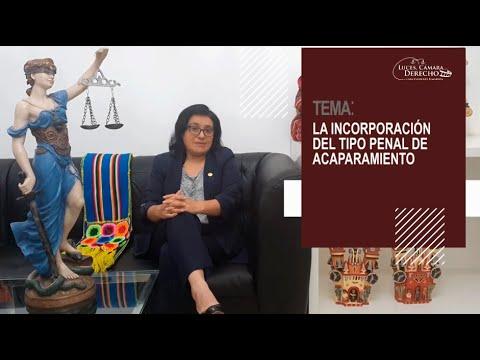 LA INCORPORACIÓN DEL TIPO PENAL DE ACAPARAMIENTO - Luces Cámara Derecho 175