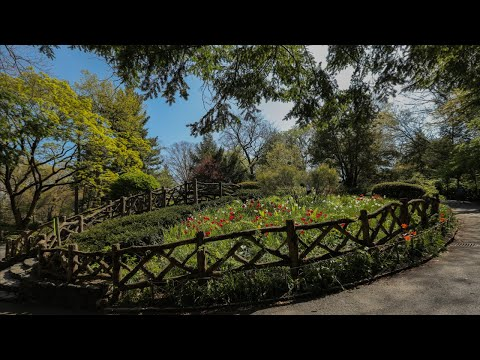 #MondayMeditation: Shakespeare Garden