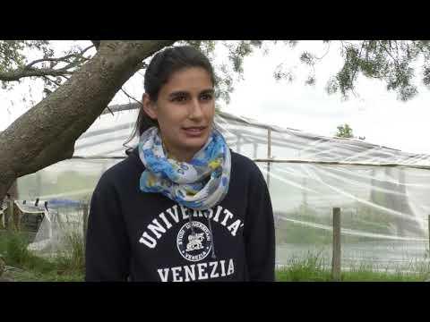 FPB Granjero en Rincón de Pereira - Tacuarembó