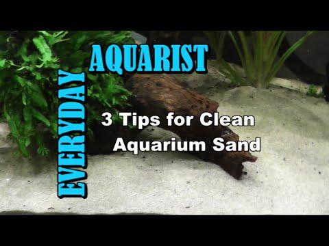 3 Tips for Clean Aquarium Sand
