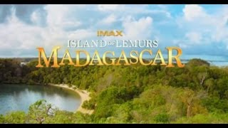 Trailer of Island of Lemurs: Madagascar (2014)