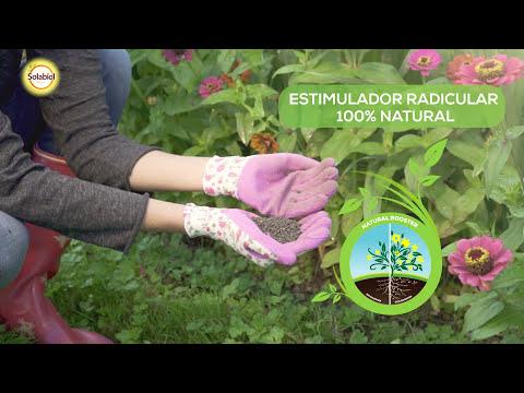 Fertilizante natural rosales 750 g Solabiol