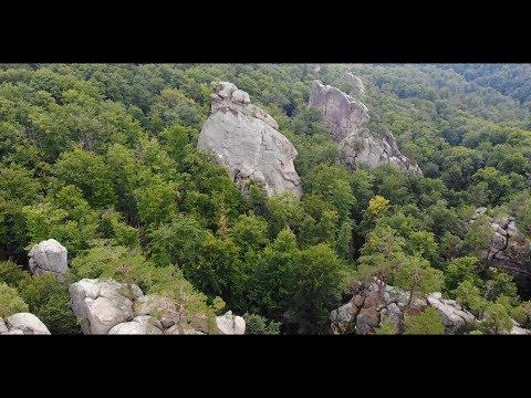 Роксолана Гищак, відео 5