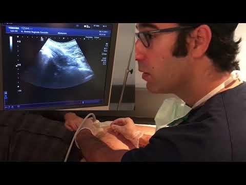 Procesos en el tratamiento de la columna vertebral