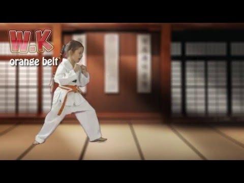 How to do a Miro Chagi ( Push Kick)