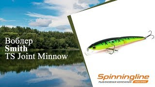 Smith - ts joint minnow 110sp