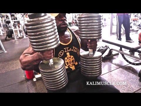 Les photos sportives le bodybuilding