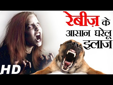 rabies symptoms and treatment how to cure rabies disease dog bites at home medicine science