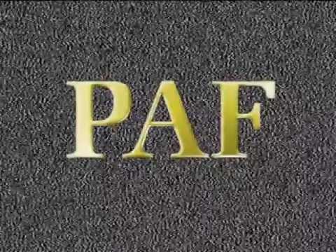 Paf83 - PAF83 Logo 2008г