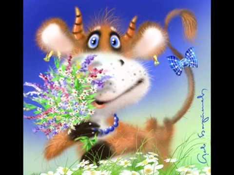 Женское счастье цветок по фен шую