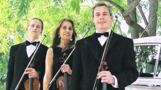 Pachelbel's Canon (most popular wedding music piece) by Sydney Ensemble