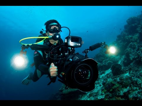 A Day in the Life of an Underwater Cameraman
