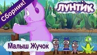 Лунтик 🌿 Малыш Жучок 🌿 Сборник мультфильмов