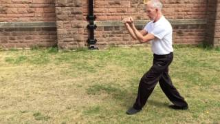 42 forms of Sun Style Tai Chi
