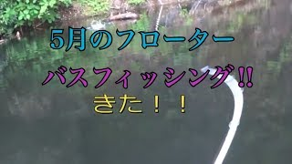 【バス釣り】【フローター】GW明けはやはり厳しいか⁈