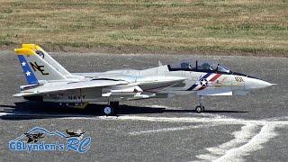 Freewing F-14 Tomcat Twin 80mm EDF Jet Flight Demo At Warbirds Over Whatcom