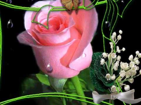 Кабриолет.Роза белая..wmv