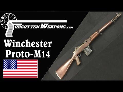 Winchester Proto-M14 Rifle