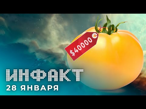 Новый герой Apex Legends, Корабль за $40000 в EVE Online, анонс Torchlight III, Ghost in the Shell…